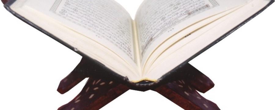 Dekodiranje Kur'ana: 'primjer zrna (iz kog) izraste sedam klasova, u svakom klasu stotinu zrna'