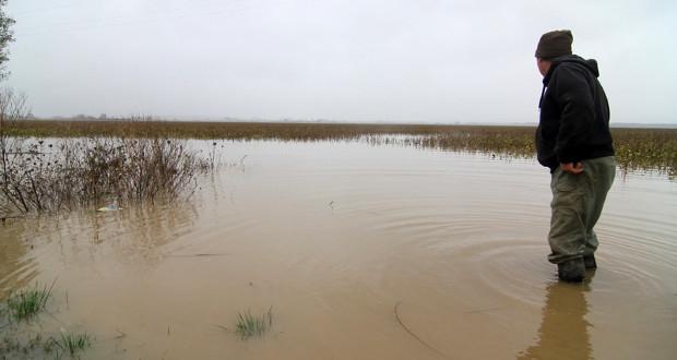 Vlada FBiH: Javni oglas za dodjelu pomoći poljoprivrednim dobrima uništenim u poplavama 2014. godine