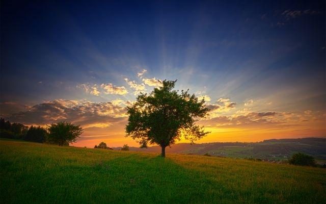 Sreći treba vjerovanje u Allaha i Sudnji dan