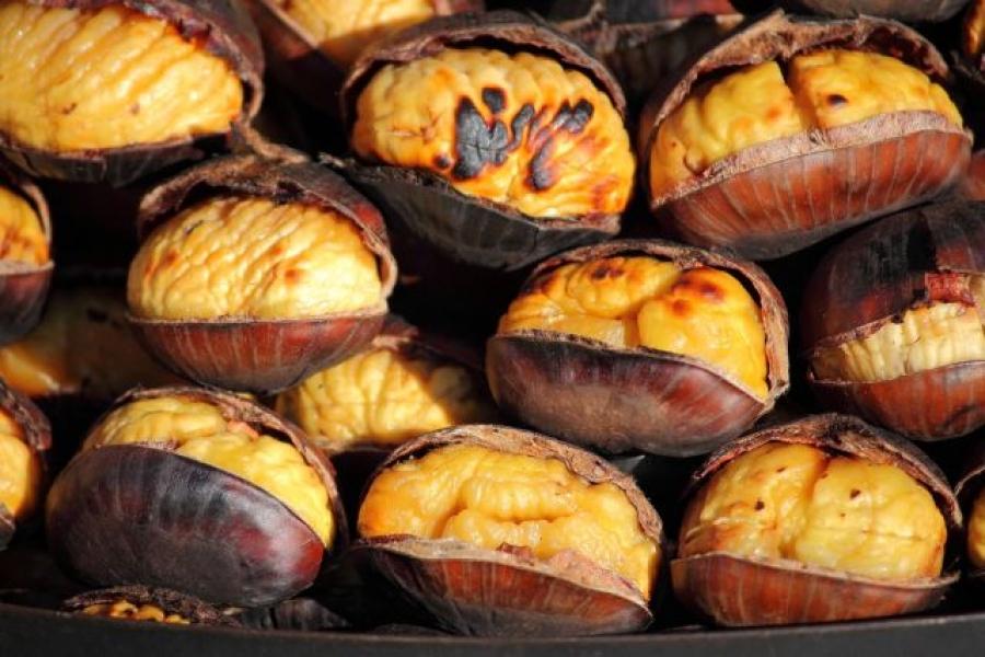 Kesten – plod koji bi se trebao svakodnevno naći na vašem stolu