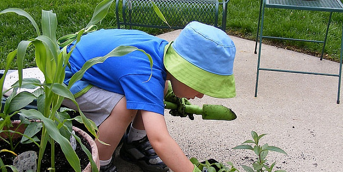 Kako da obnovite vašu baštu bez mnogo novca?
