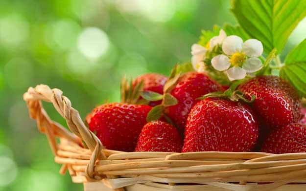 Proljetna superhrana čiju sezonu morate iskoristiti