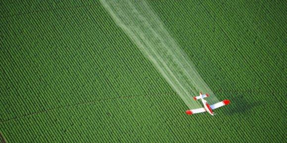 Pesticidi u hrani – koliko su štetni i kako ih izbjeći?