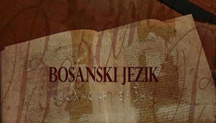 O bosanskom na bosanskom: Maternji i strani jezik