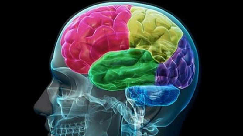Savjeti, vježbe i igre za zdraviji mozak