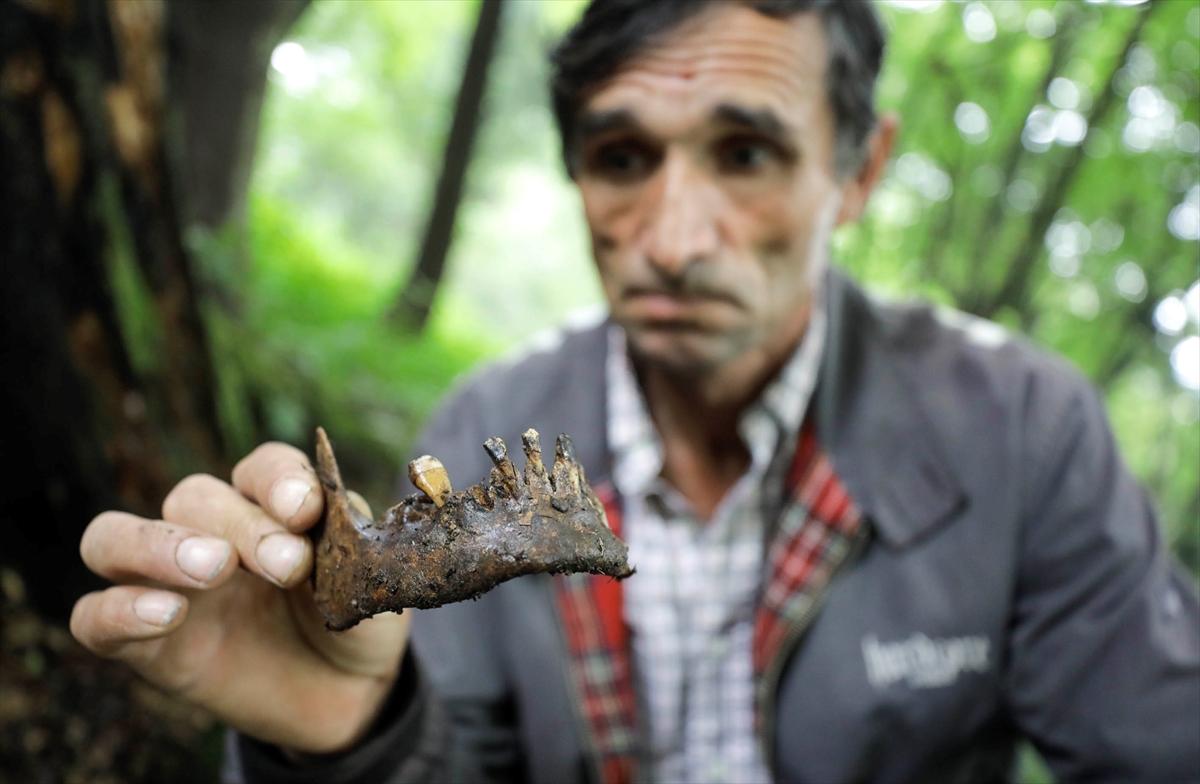 Ramiz Nukić 14 godina sakuplja kosti ubijenih Srebreničana
