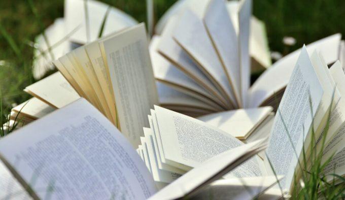 Školstvo kao faktor očuvanja i razvoja jezika, pisma i kulture