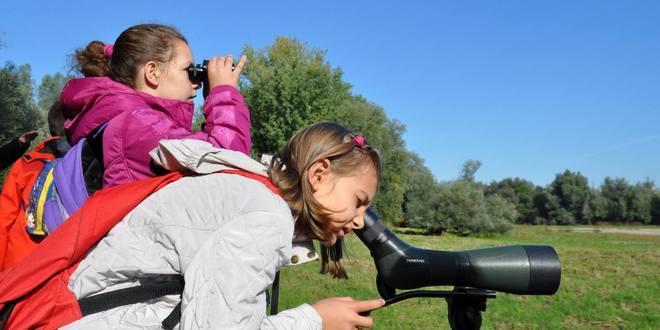 Posmatranje ptica: Nove lokacije za nauku i turizam