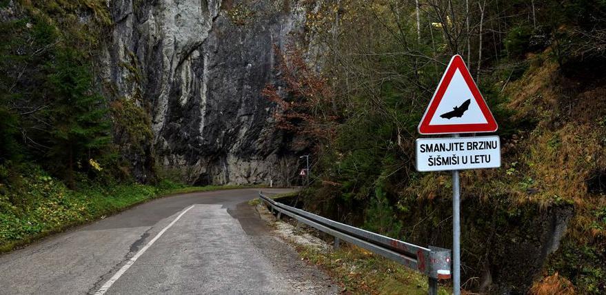 Prvi u svijetu dobili smo saobraćajni znak koji upozorava na šišmiše u pećini